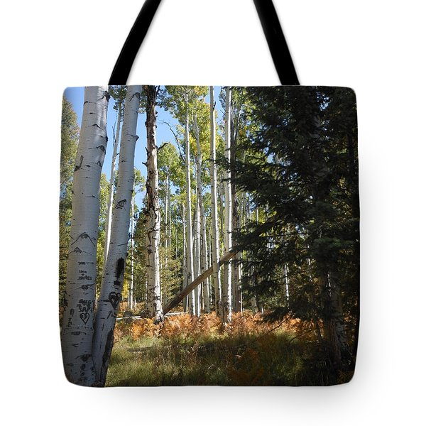 Autumn Shadows Tote Bag by Fred Wilson