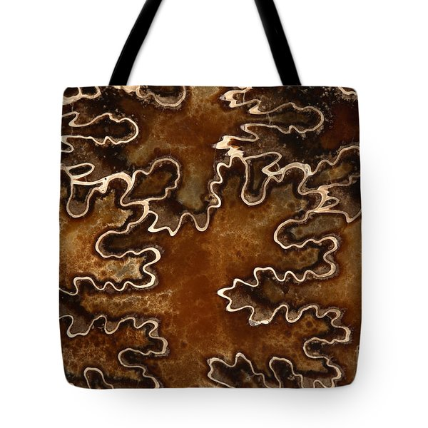Baculites Fossil Tote Bag