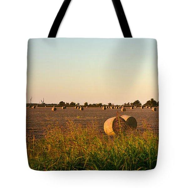Bales In Peanut Field 2 Tote Bag by Douglas Barnett