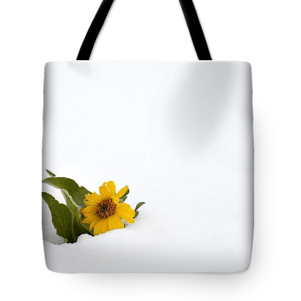 Balsamroot In Snow Tote Bag by Hal Horwitz and Photo Researchers