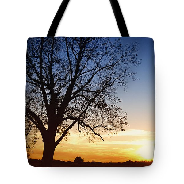 Bare Tree At Sunset Tote Bag by Skip Nall