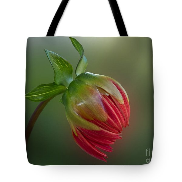 Before The Blossom Tote Bag
