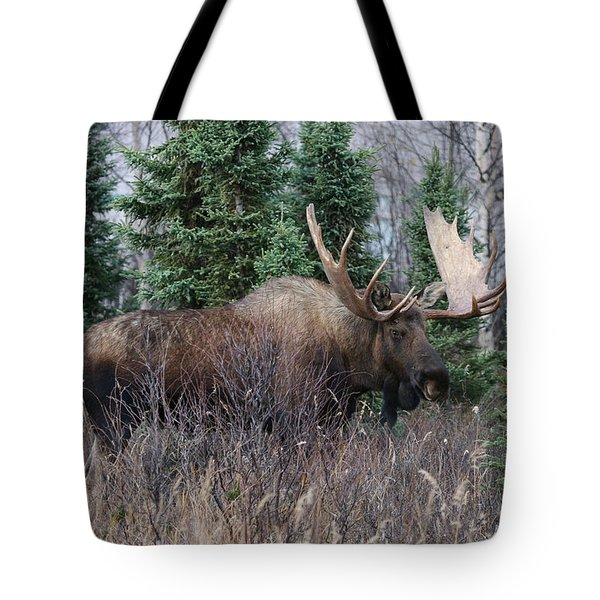 Tote Bag featuring the photograph Big Boy by Doug Lloyd
