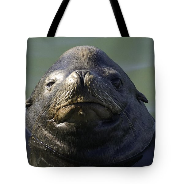 Tote Bag featuring the photograph Big Face by Betty Depee
