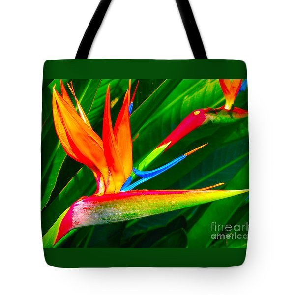 Bird Of Paradise Tote Bag by Eva Kaufman