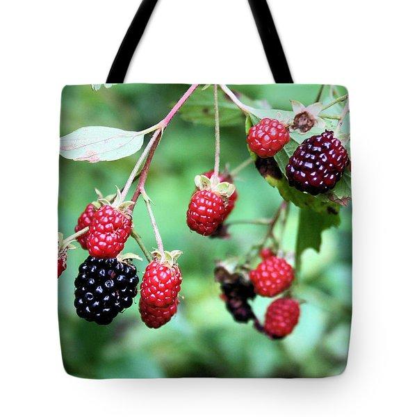 Blackberries Tote Bag by Kristin Elmquist
