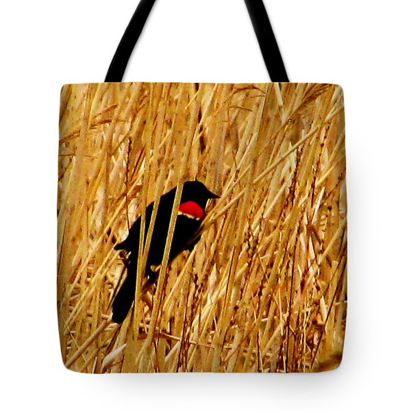 Blackbird In The Reeds Tote Bag