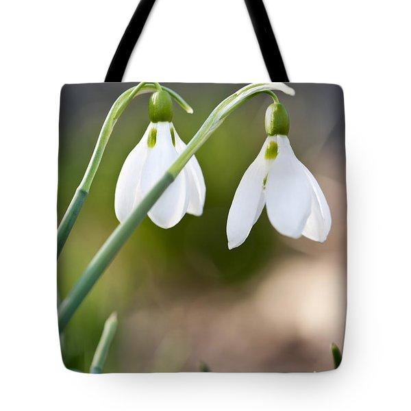 Blooming Snowdrops Tote Bag by Elena Elisseeva