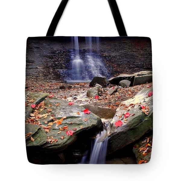 Blue Hen Falls Tote Bag by Frozen in Time Fine Art Photography