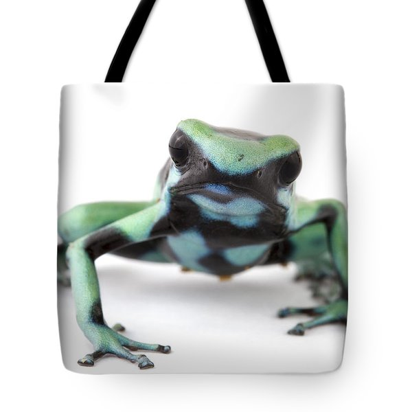 Blue Poison Dart Frog Barbilla Np Costa Tote Bag by Piotr Naskrecki