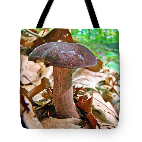 Bolete Mushroom Tote Bag by Mother Nature