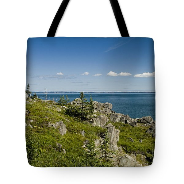 Tote Bag featuring the photograph Boot Head by Alana Ranney