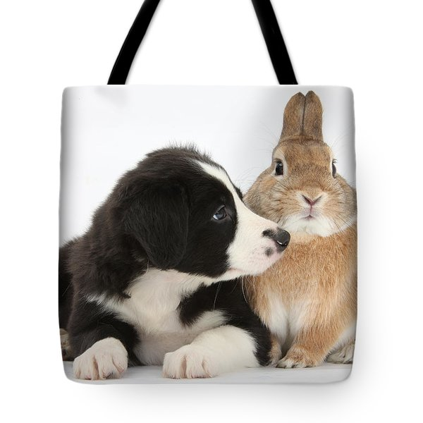 Border Collie Pup And Sandy Tote Bag by Mark Taylor