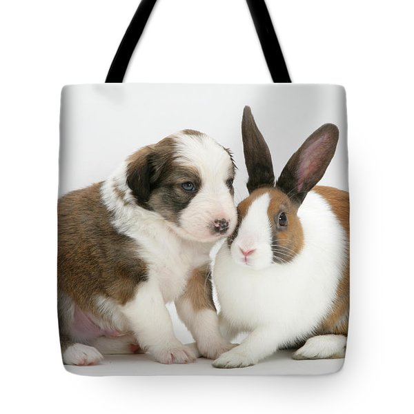 Border Collie Pup With Dutch Rabbit Tote Bag by Jane Burton