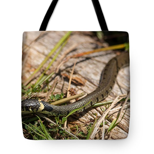 British Grass Snake Tote Bag