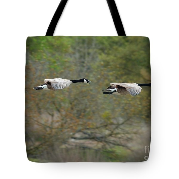 Tote Bag featuring the photograph Canada Geese by Doug Herr