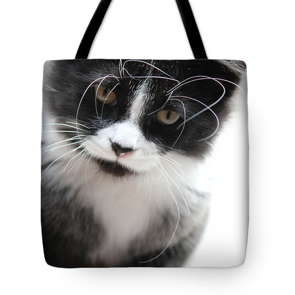 Cat In Chaotic Thought Tote Bag