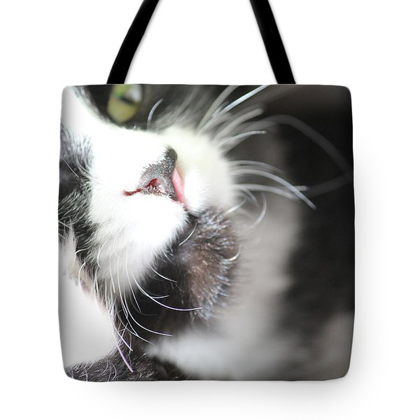 Cat Moment Tote Bag