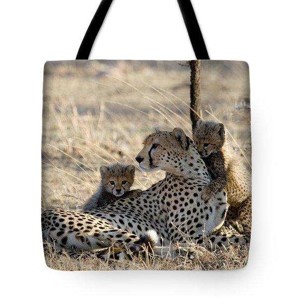 Cheetah Mother And Cubs Tote Bag by Gregory G. Dimijian, M.D.