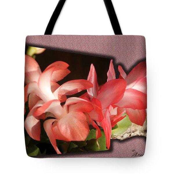 Christmas Cactus Tote Bag by EricaMaxine  Price