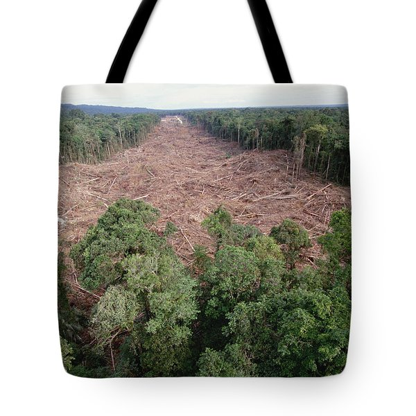 Clearing Of Tropical Rainforest South Tote Bag
