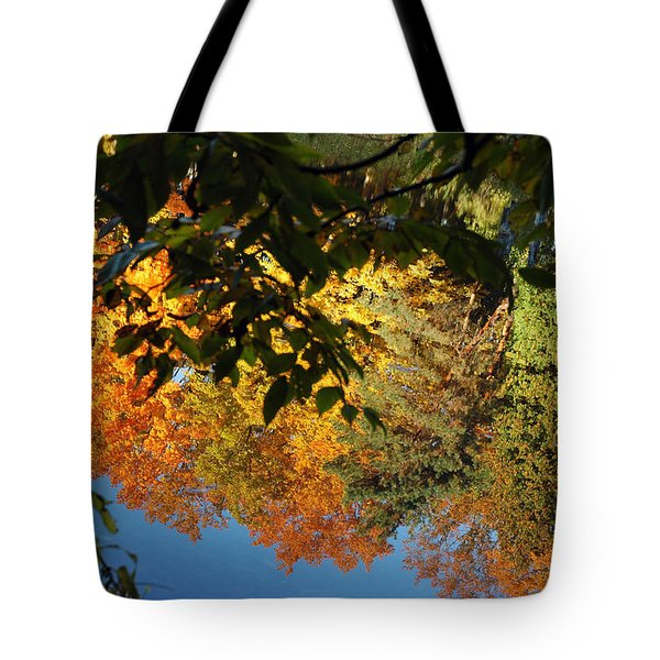 Colorful Reflections Tote Bag by LeeAnn McLaneGoetz McLaneGoetzStudioLLCcom