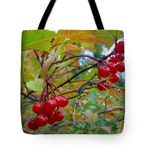 Tote Bag featuring the photograph Cranberries by Jim Sauchyn
