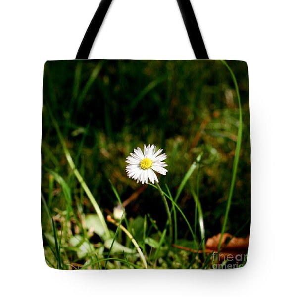 Daisy Daisy Tote Bag by Isabella F Abbie Shores