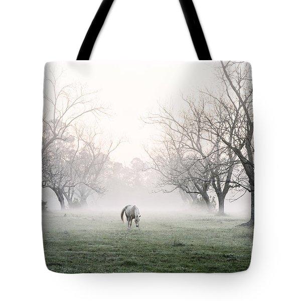Daybreak Tote Bag by Scott Pellegrin