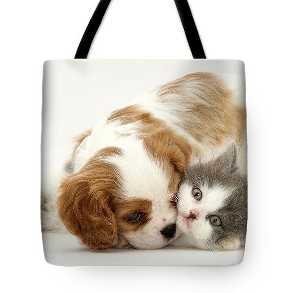 Dog And Cat Tote Bag by Jane Burton