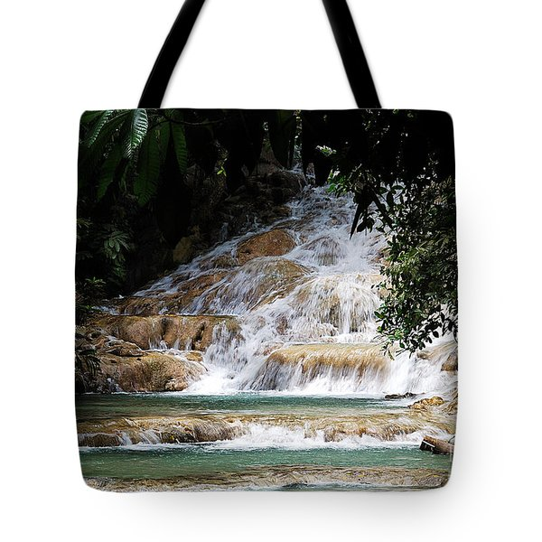 dunn falls II Tote Bag by Hannes Cmarits