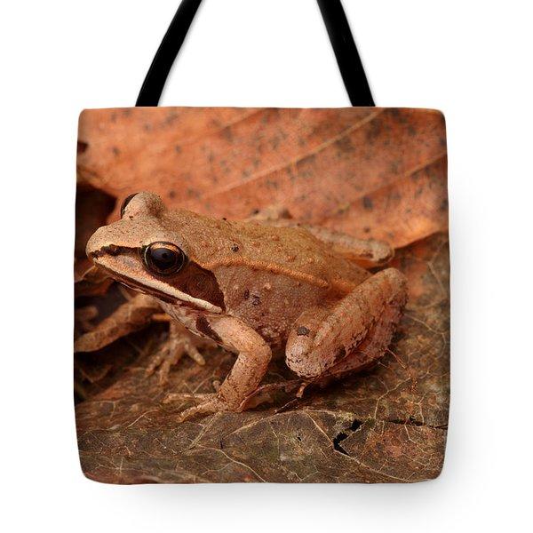Eastern Wood Frog Tote Bag by Ted Kinsman