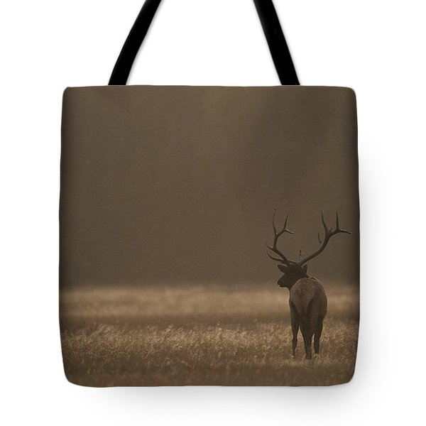 Elk Or Wapiti Bull At Sunset Tote Bag