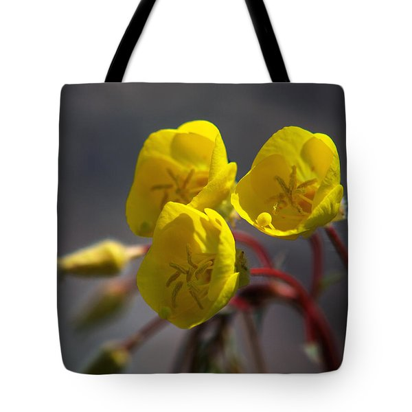 Tote Bag featuring the photograph Desert Evening Primrose by Joe Schofield