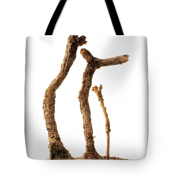 Family Tote Bag by Adam Long