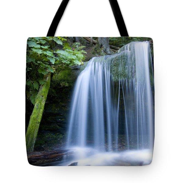 Fern Falls Tote Bag by Idaho Scenic Images Linda Lantzy