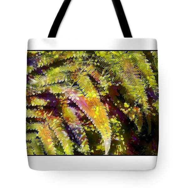 Fern In Dappled Light Tote Bag by Judi Bagwell