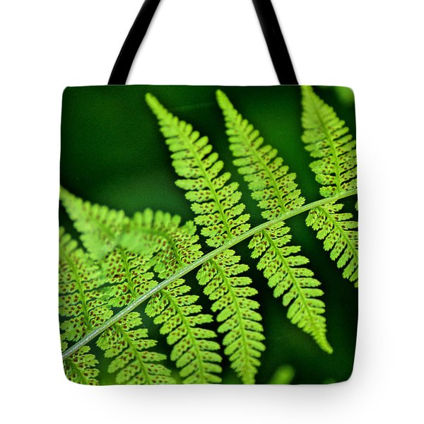 Tote Bag featuring the photograph Fern Seed by Sharon Elliott