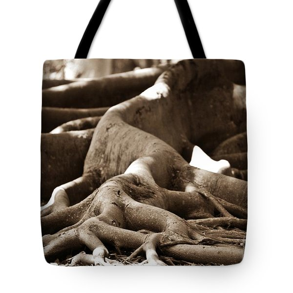 Fig Tree Roots Tote Bag by Angela Murray