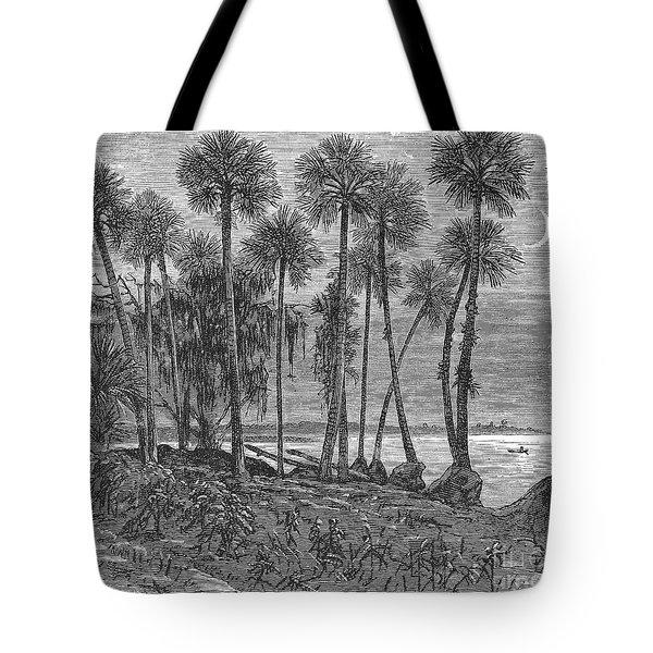 Florida: St. Johns River Tote Bag by Granger