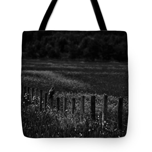 Foraging Break  Tote Bag by Empty Wall