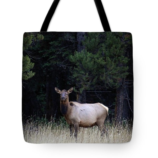 Tote Bag featuring the photograph Forest Elk by Steve McKinzie