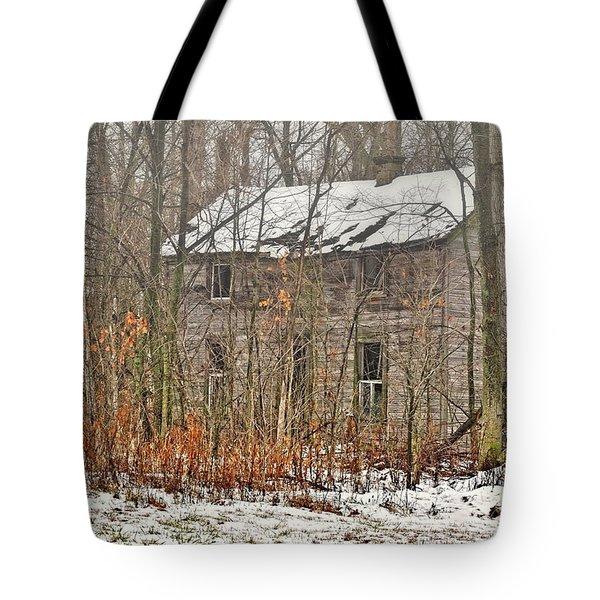 Forgotten Dreams Tote Bag by Pamela Baker
