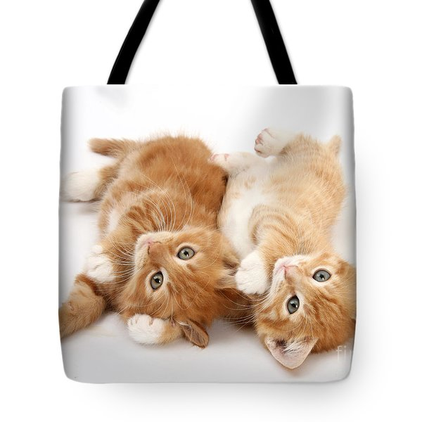 Ginger Kittens Tote Bag by Mark Taylor
