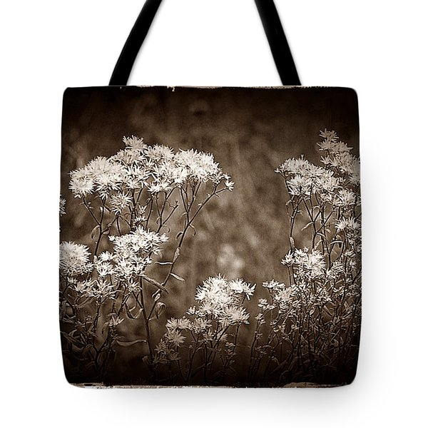 Going To Seed Tote Bag by Judi Bagwell