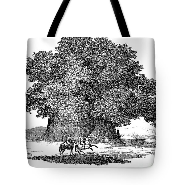 Great Chestnut Tree Tote Bag by Granger