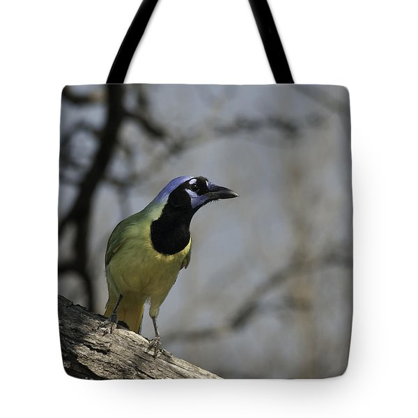 Tote Bag featuring the photograph Green Jay by Betty Depee