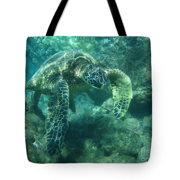 Green Sea Turtle Hawaii Tote Bag by Bob Christopher