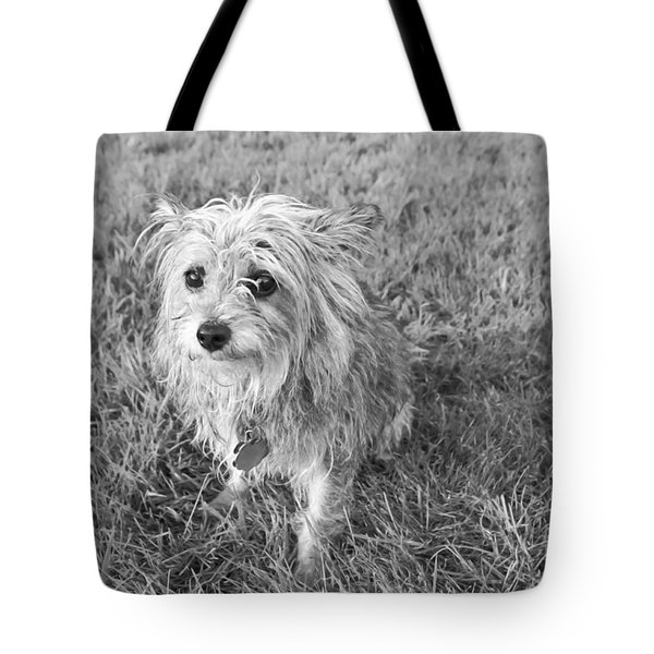 Gremlin Tote Bag by Jeannette Hunt