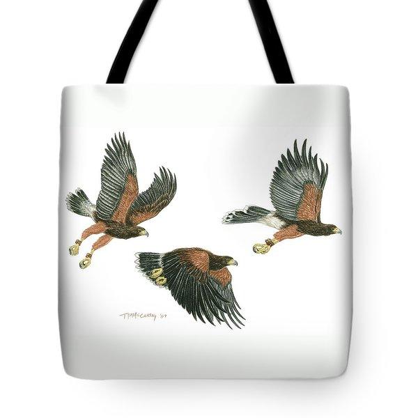Harris Hawk Cast Tote Bag by Tim McCarthy